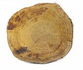 Wood Isolated