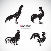 pic of roosters  - Vector group of rooster design on white background - JPG