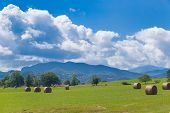 picture of hay bale  - Round bales of hay on farmland with the Pyrenees backdrop in Saint - JPG