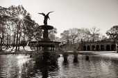 picture of fountains  - Central Park Autumn and angel fountain in midtown Manhattan New York City - JPG