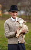 pic of baby goat  - Closeup of a senior man holding a cute baby goat outdoor - JPG