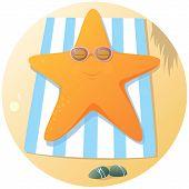 Cute Starfish Sunbathing