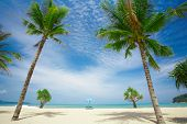 Beach Simmetry