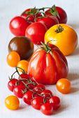 Vielfältige Arten von Tomaten.