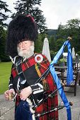 stock photo of bagpiper  - A Scottish bagpiper in full highland kilt dress and beard holding bagpipes - JPG