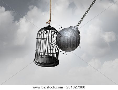 Freedom Cage And Break Free