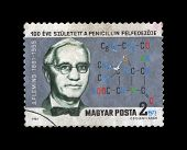 Hungary - Circa 1981: Cancelled Stamp Printed In Hungary, Shows penicillin creater Alex Fleming