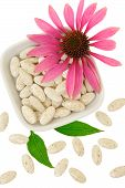 Echinacea purpurea extract pills alternative medicine concept