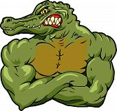 stock photo of gator  - This is an alligator and crocodile for use in logos or as team mascot - JPG