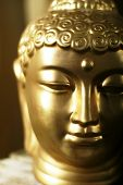 Buddha'S Head.