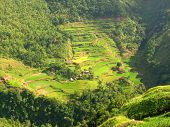 stock photo of ifugao  - Rice terraces village in Ifugao province Philippines - JPG