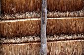 Hut palapa traditional cabin sun roof wiev from above Mexico architecture