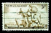 NEW ZEALAND - CIRCA 1956: A stamp printed in New Zealand honoring Southland centenial, circa 1956