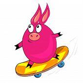 vector de cerdo de deporte de dibujos animados. Ilustración animal aislado