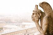 Paris Notre Dame Cathedra Chimere