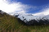 Mountain Cook