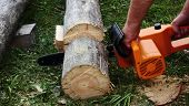 picture of man chainsaw  - Electric chainsaw  in the man - JPG