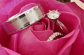 Wedding Rings In Red Rose