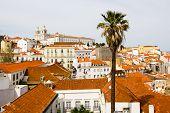 Alfama, Lisboa Antigua, Palma