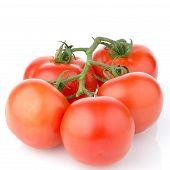 rote reife Tomaten