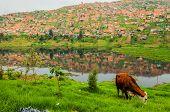 Slum South of Bogota