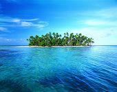 Soleada isla de la palmera