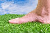 Barefoot on the fresh green grass on a sunny day