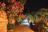 Illuminated Path At Luxury Hotel, Marmaris, Turkey