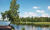 Mon Repos Park
