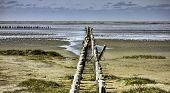 Wadden Sea From The Island Mando, Denmark