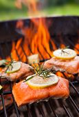 picture of salmon steak  - Grilled salmon steaks on fire - JPG