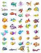 picture of aquatic animals  - Illustration of a group of different fishes on a white background - JPG
