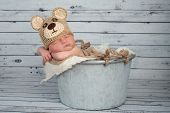 Newborn Baby Boy In A Teaddy Bear Costume