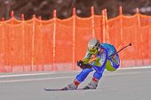 PATSCHERKOFEL, AUSTRIA - JANUARY 15 Stefan Hadalin (Slovenia) places 11th in the Super-G of the Men'