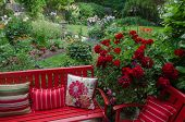 stock photo of geranium  - Overlooking a colorful backyard garden with casual red furniture and geraniums - JPG