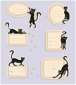 6 Cat Labels