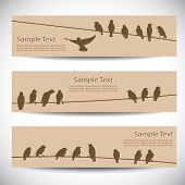 Set of banners with birds on wires