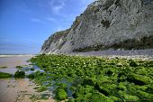 Green Rocks On Sea Coast Near Wissant City At Nord-pas-de-calais Region, France.
