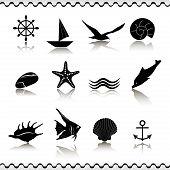 Set of 16 black icons marine life