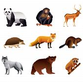 Asian Animals Vector Set