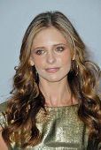 Sarah Michelle Gellar  at the 2007/2008 Chanel Cruise Show Presented by Karl Lagerfeld. Hanger 8, Sa