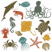 stock photo of shell-fishes  - sea animals and fish icons  - JPG