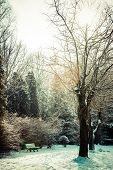 Winter Park In Poland.