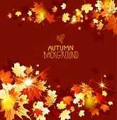 Autumn background with maple leaves. Copy space