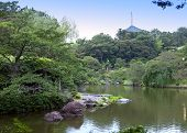 Japan. Narita. The lake in park