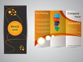 Tri -fold business brochure