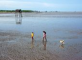 Asia Children Walking On Beach