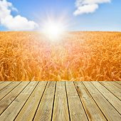Wooden Deck Floor And Wheat Field