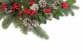 Winter and christmas floral background border with snow, holly, mistletoe, fir and pine cones over w