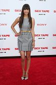 LOS ANGELES - JUL 10:  Hannah Simone at the